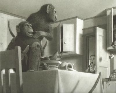 Van Allsburg Monkeys