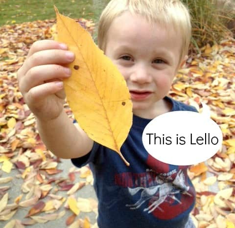lello leaf | from Artchoo.com