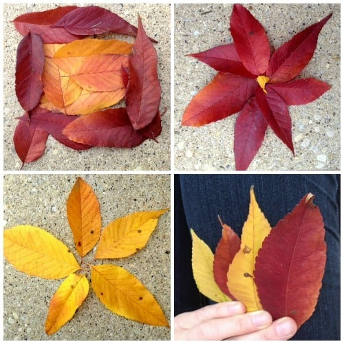 leaf collage | Artchoo.com