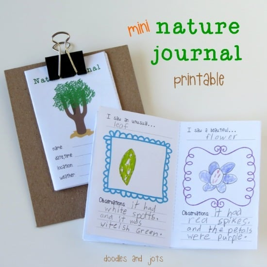 Mini Nature Journal Printable • Artchoo.com
