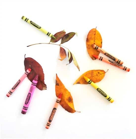 fall leaves and crayons