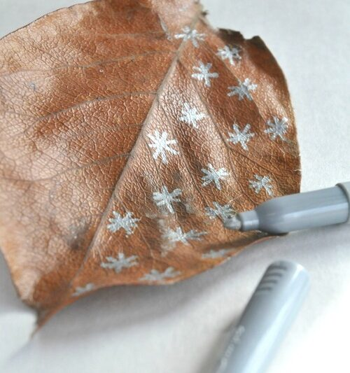 drawing on leaves