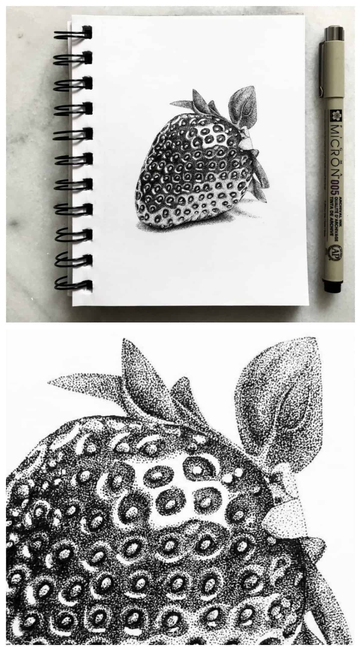 Ase Balko pointillism strawberry drawing