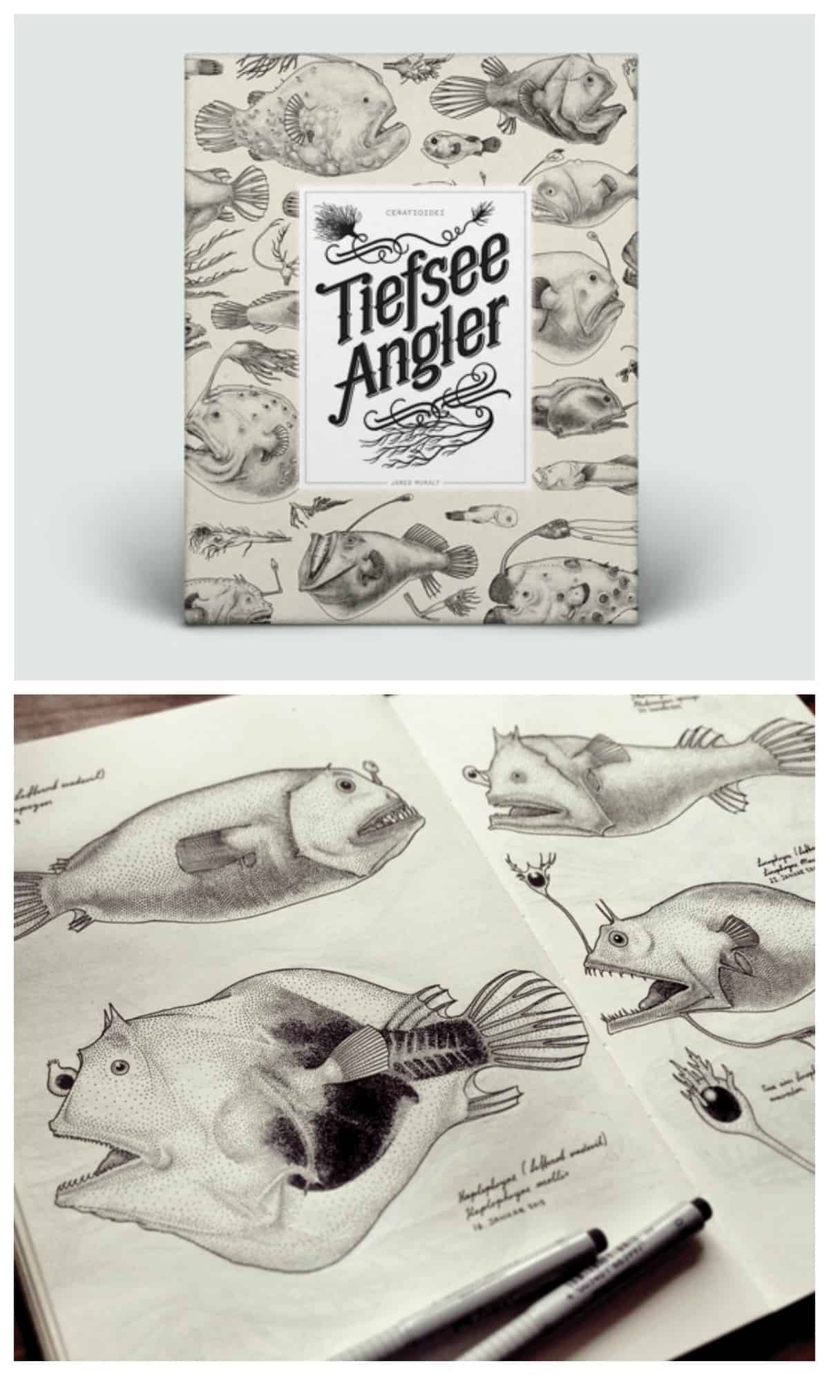 angler fish illustrated book