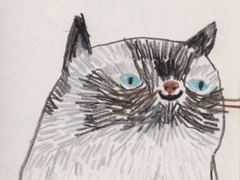 funny cat portrait illustration smiling