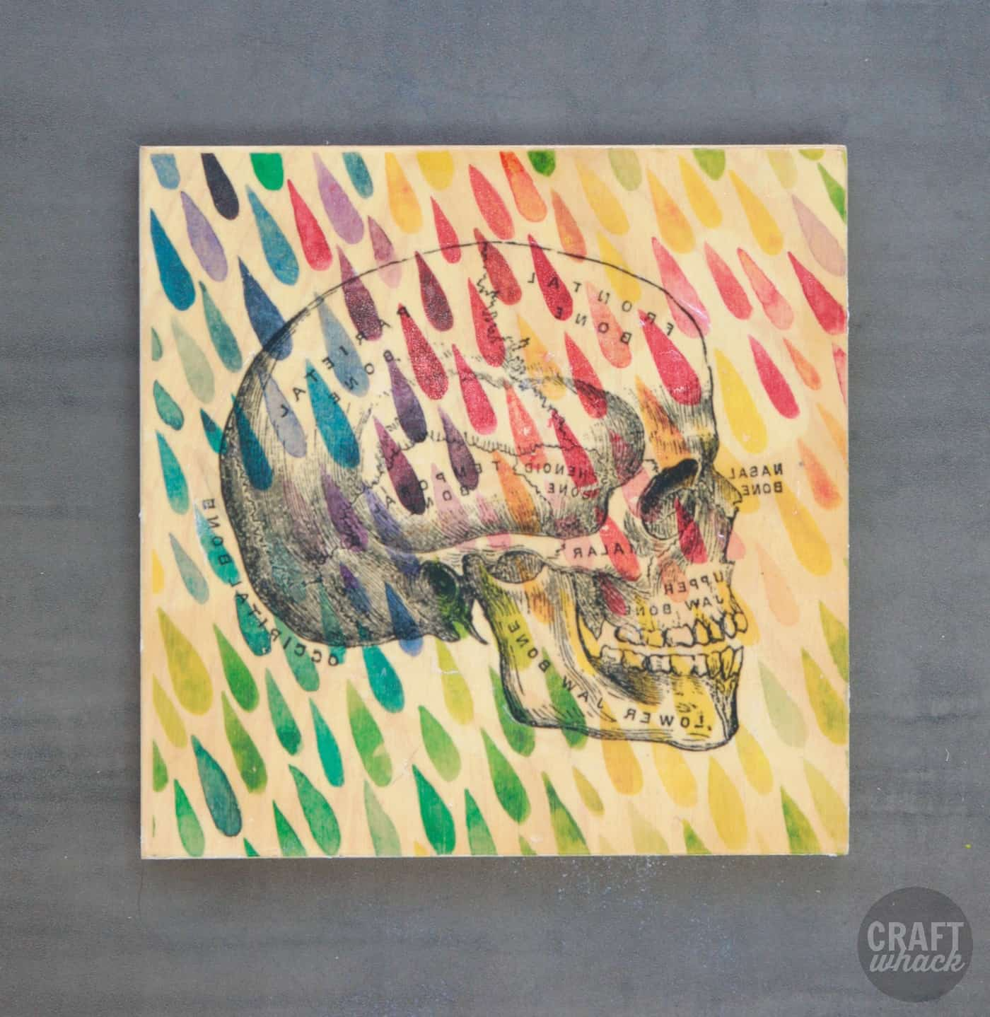 skull and colorful raindrop images transferred onto wood