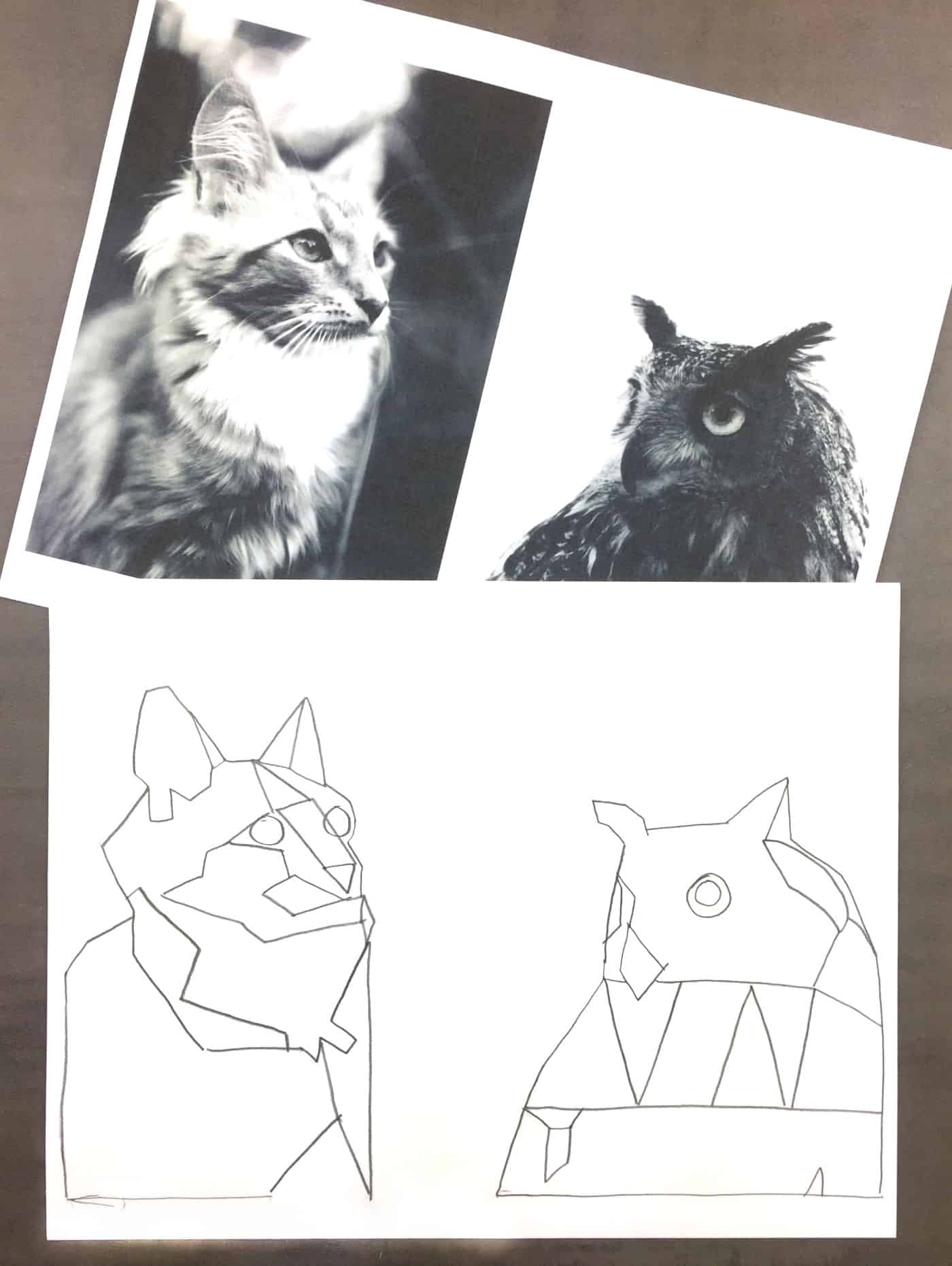 Owl and cat tracing doodles