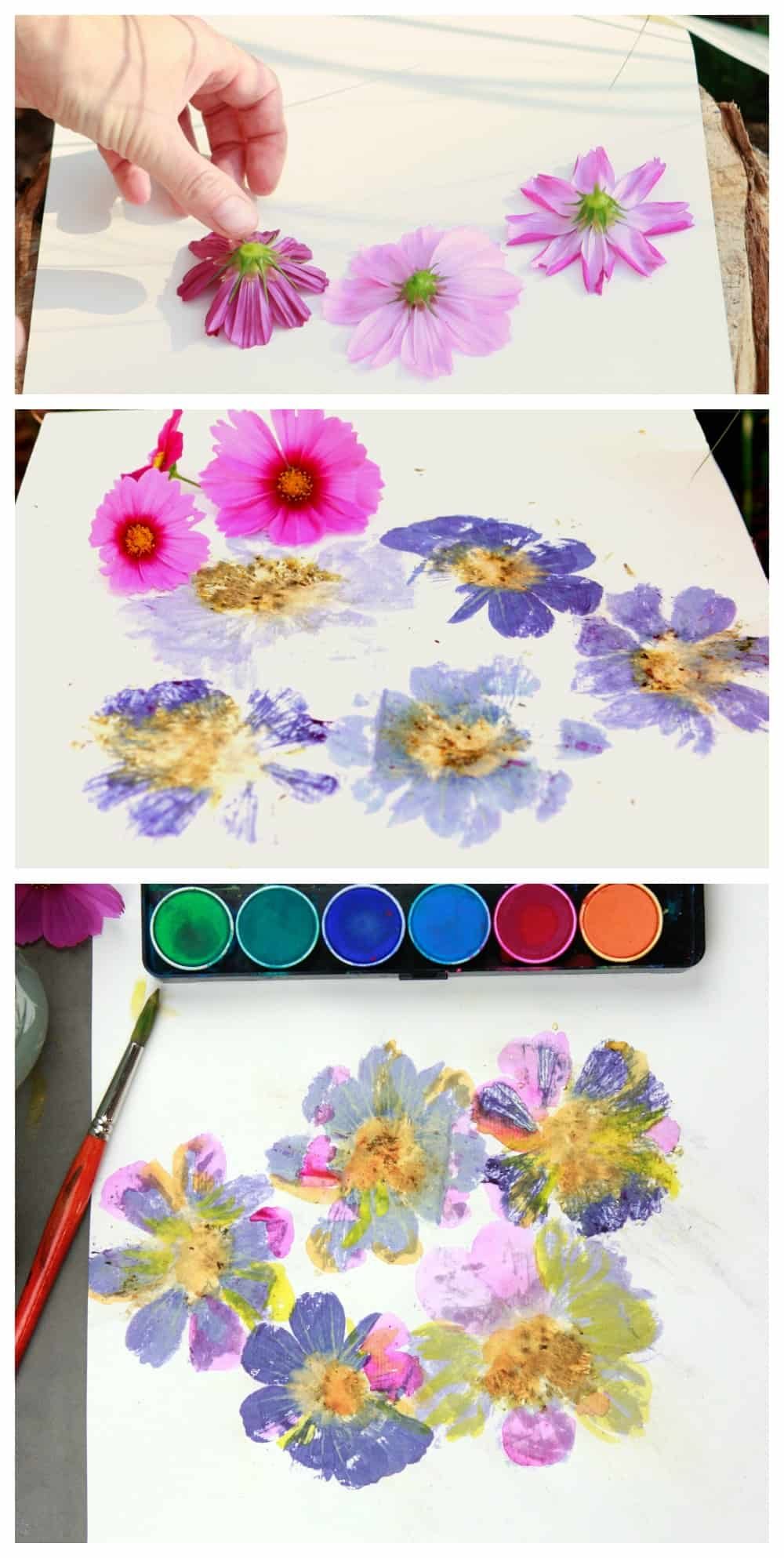 flower pounding flowers on paper and painted