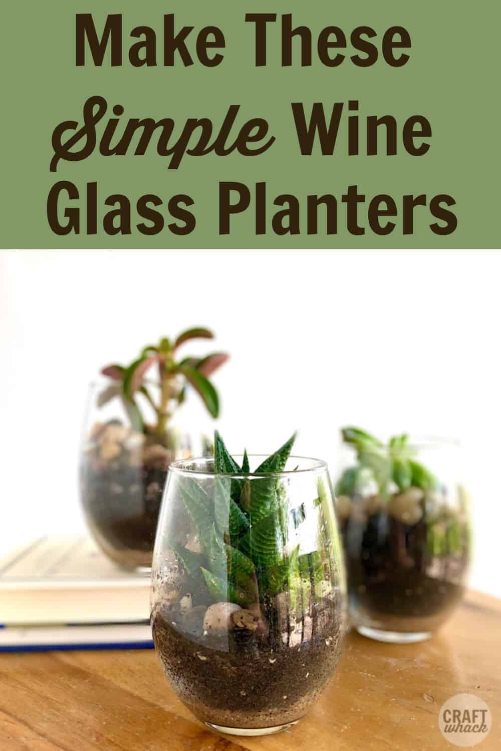 succulents in wine glasses diy