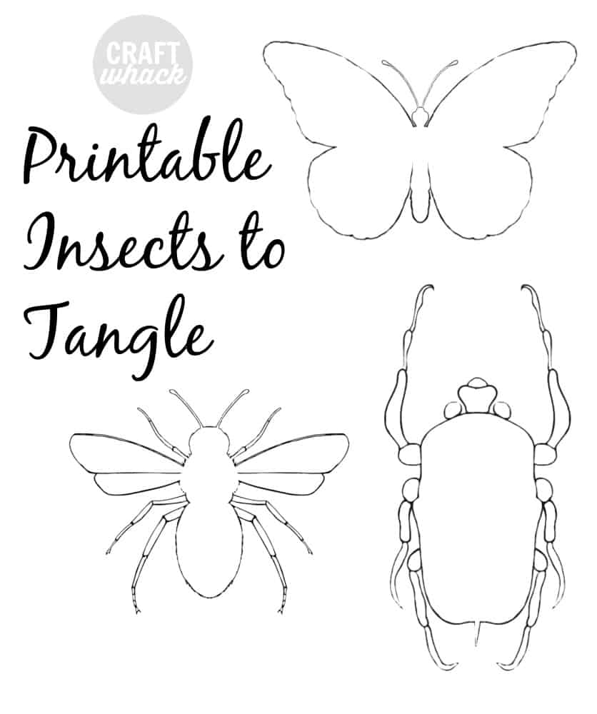 insects to print out and zentangle