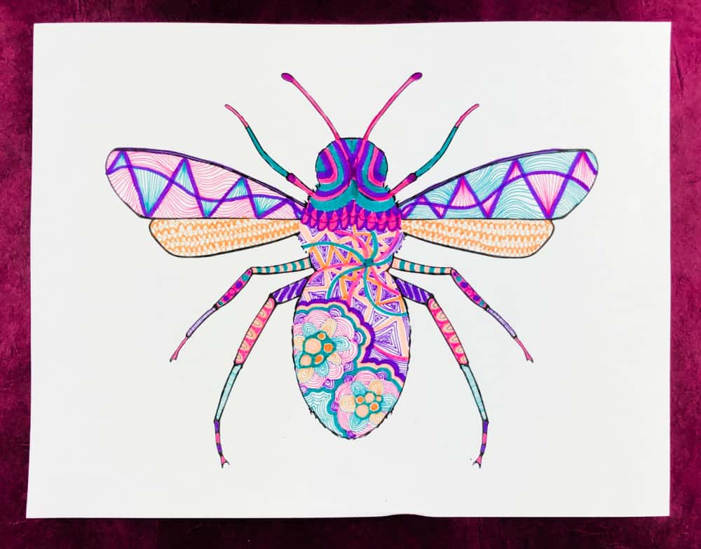zentangle insects colorful