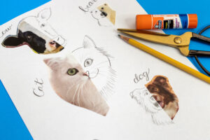 animal drawing for kids